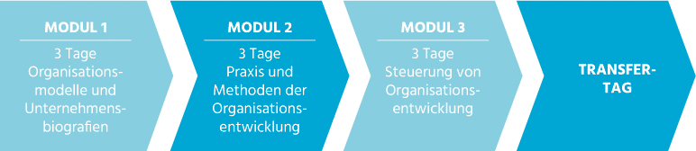 Clea Buttgereit - Beratung - Training - Coaching - Organisationsentwicklung - Modulgrafik